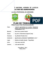 Cacao y Labores Agronómicas en La Empresa Alborada v 3.0 Yasmin Gave Listo 1
