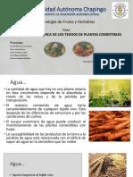 Composición química de las frutas y hortalizas