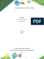 Fase 2 - Identificación de La Problemática y Alternativas de Solución (Plantilla Para La Presentaciòn)