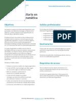 E-U Publicidad Programatica 2018 Esp