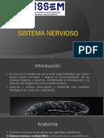 9.- Sistema Nervioso (3)