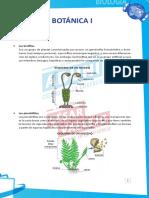 Resumen y dirigidas_B_04.pdf