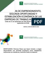programa de emprendimiento 2018.pdf