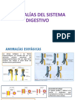 Anomalias Del Sistema Digestivo