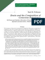 Pribram-JCS1999.pdf