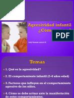 Presentación Agresividad Infantil Actualizada
