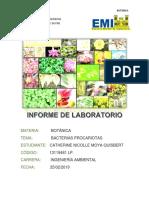 Lab.Bacterias Procariotas