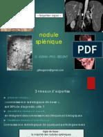 09-nodule splénique GERMAD.pdf