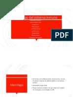 Equipo 5 Células del Sistema Inmune