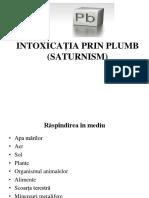 Saturnism