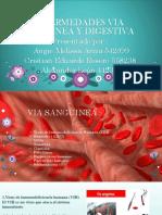 Enfermedades via Sanguinea y Digestiva