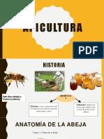 abejas exposicion