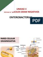 Clase N°8-Unidad 4-Tema 6-Bacterias Gram Negativas