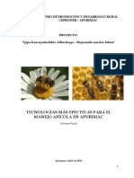 140439295-Informe-Final-Apicola.docx