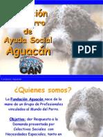 Presentacion Aguacan