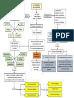 Mapa Conceptual Act 1 (Desarrollo Emocional