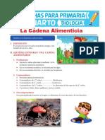 La-Cadena-Alimenticia-para-Cuarto-de-Primaria.pdf
