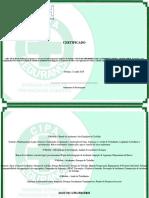Capacitação Para Os Membros Da CIPA, Norma Regulamentadora 5 NR5-Certificado 0