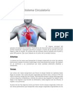 Partes Del Sistema Circulatorio Lina