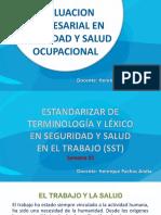 evaluacion empresarial en sso.pptx