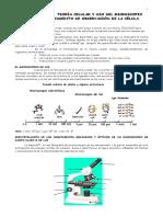 Autoinstructivo_2._Teoria_celular_y_microscopio.pdf