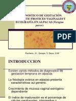 MANUAL DE ALPACAS PIOJERAS
