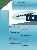 Rapport de Stage de Fin de Formation Hassan Ramzi