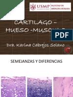 Cartilago – Hueso -Musculo 2019