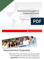 EFICIENCIA ENERGETICA E SUSTENTABILIDADE