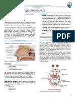 Clase Neurología - Semiologia de Pares Craneanos