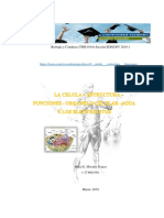 CELULA – ESTRUCTURA – FUNCIONES - ORGANELO CELULAR -AGUA Y  ELECTROLITOS -Rubenramstein
