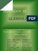 PARES PARA GLANDULAS.pdf