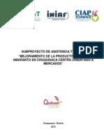 Subproyecto at - Amaranto CIAP Tomina s