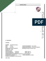 115236547-HISTORIA-CLINICA-Nº1-Sr-Gabriel.doc
