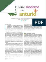 Anturio.pdf