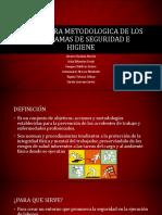 ESTRUCTURA METODOLOGICA DE los programas de SEGURIDAD E.pptx