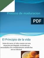 Proceso madur CEPADI.ppt