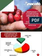 03_DESPULPADO Y CLASIFICACION_REMOCION DEL MUCILAGO_LAVADO Y CLASIFICACION (1).pdf