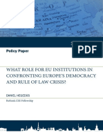 WHAT_ROLE_FOR_EU_INSTITUTIONS_IN_CONFRON.pdf