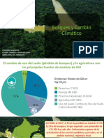 Programa Reduccion de Emisiones