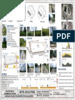 Site Analysis1
