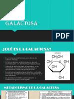 Ga Lactosa
