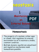 11. Homeostasis.ppsx