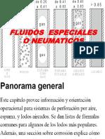 FLUIDOS ESPECIALES O NEUMATICOS.pdf