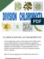 4 Chlorophyta Expo
