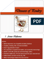 5. Poultry Health Management.ppt