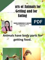 Body Parts of Animals
