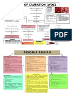 WOC TALASEMIA.pdf