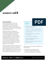 NetSuite Essentials Training Data Sheet