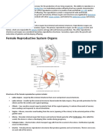 The Reproductive System BIO2